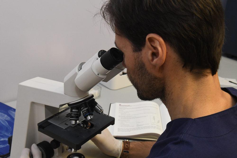 micologia-monza-e-brianza-gorani